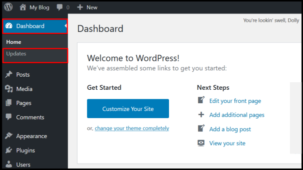 WordPress dashboard update to a newer version